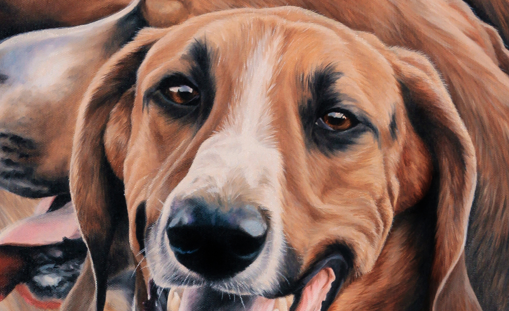 chien de meute  l'huile - detail
